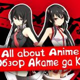All about Anime — обзор Akame ga Kill