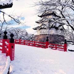 В Японии празднуется Сэцубун!