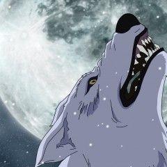 Земля обетованная — обзор на Wolf's Rain.
